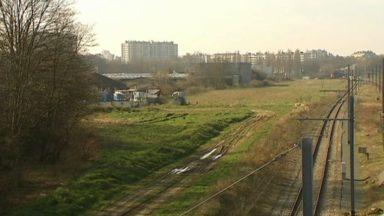 Les espaces verts en recul à Bruxelles