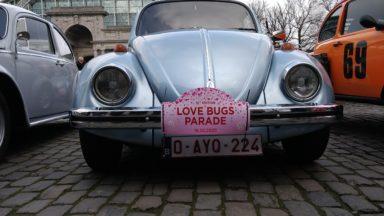 300 Coccinelles rassemblées pour la 12e Love Bugs parade