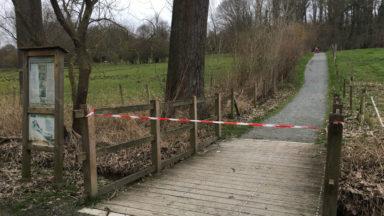 Tempête Ellen : Bruxelles-Environnement ferme ses espaces verts