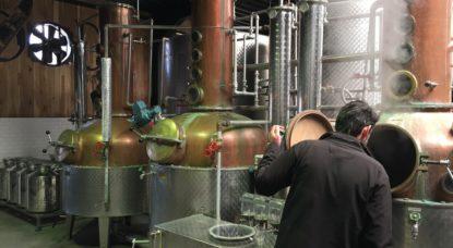 Distillerie De Cort - Thomas Dufrane BX1