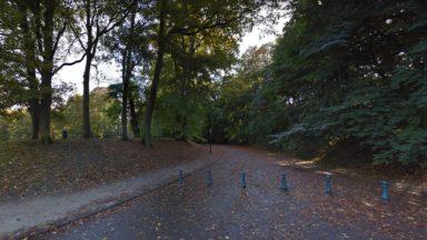 50 arbres dangereux abattus dans le parc de la Woluwe