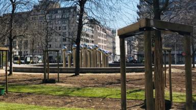 """Bruxelles Mobilité utilise un système d'arrosage """"intelligent"""" pour les arbres récemment plantés"""