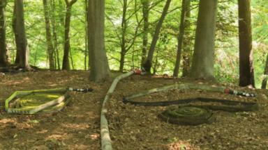 Forêt de Soignes : nouvel incendie maîtrisé