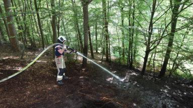 Un incendie s'est déclaré ce matin dans la Forêt de Soignes