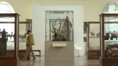 Le Musée Art & Histoire rouvre ses portes avec un parcours obligatoire suite au Covid-19