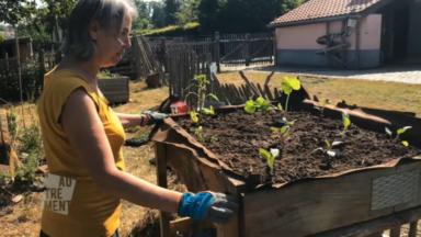 Autrement : avec un mini-potager, cultiver ses légumes soi-même