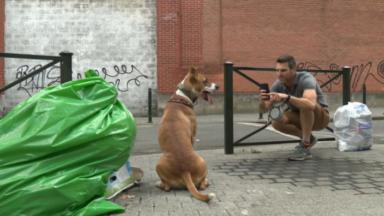 Il met en scène son chien sur des photos de dépôts clandestins et fait le buzz sur les réseaux sociaux