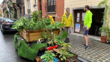 Schaerbeek : le Citizen Garden a fait son retour devant le garage de la rue Devreese