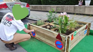 Egmont Park'ing : un jardin citoyen apparaît sur la rue d'Egmont