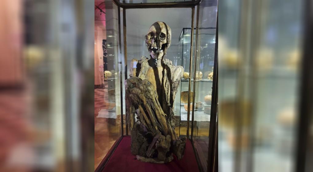 Momie Rascar Capac - Musée Art et Histoire Cinquantenaire
