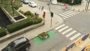 Ville de Bruxelles : une bouture du Citizen garden schaerbeekois prend racine rue d'Egmont