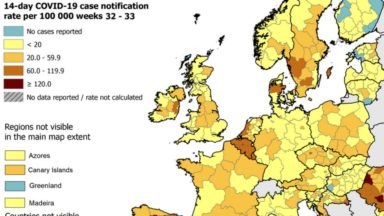 """Bruxelles en rouge sur la carte européenne du coronavirus : """"La situation a tendance à se stabiliser"""""""