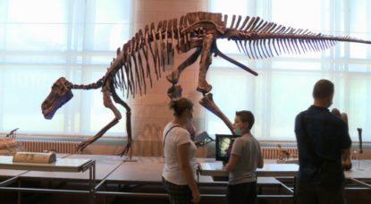 Museum Sciences Naturelles Enfant visiteur - Capture BX1