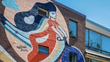 Inauguration d'une fresque à Laeken pour encourager les femmes à prendre le vélo