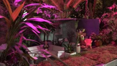 Triforium : une nouvelle galerie d'art s'ouvre au cœur du parc Léopold