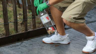 Clean Walk 2020 : près de 30.000 mégots ramassés