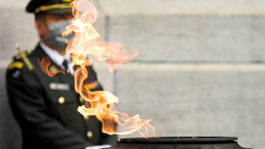 Commémorations de l'Armistice : le roi Philippe s'est rendu à la Colonne du Congrès