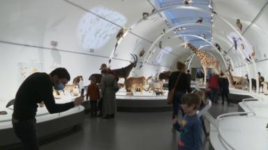 Les musées font le plein en ce dernier week-end de l'année