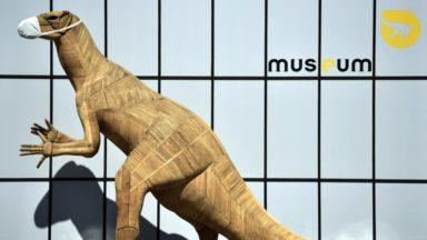 Les musées ont perdu 20 millions d'euros en 2020 en raison de la crise sanitaire
