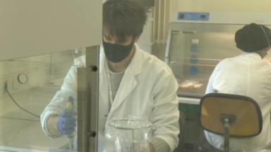 Coronavirus : l'analyse des eaux usées permet de suivre l'évolution de l'épidémie