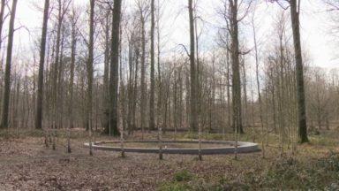 Forêt de Soignes : une députée veut une meilleure visibilité pour le mémorial des victimes des attentats