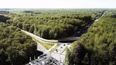 """Woluwe-Saint-Pierre s'opposera """"par tous les moyens de droit"""" au projet flamand avenue de Tervueren"""
