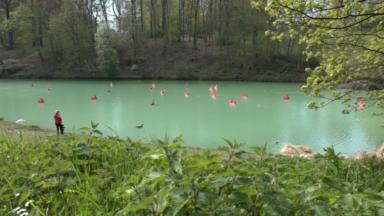La 4e édition de la Biennale d'Art contemporain s'est ouverte sur trois communes bruxelloises
