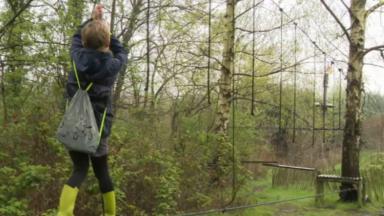 Neder-Over-Heembeek : le parc d'aventure Sortilège rouvre ses portes deux mois après l'incendie
