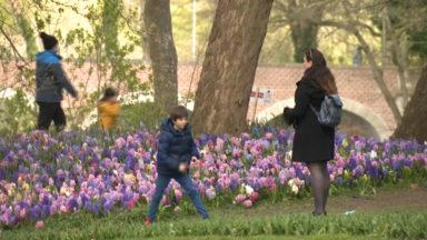 À deux pas de Bruxelles, les Floralies sont de retour au château de Grand-Bigard