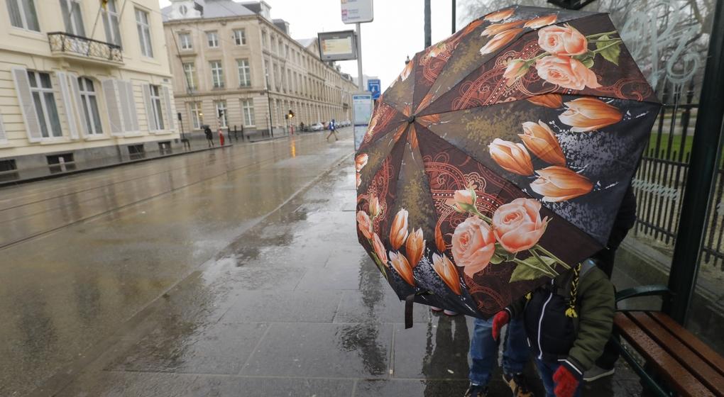 Vent Pluie Orage Tempête Rue Royale - Illustration Belga thierry Roge