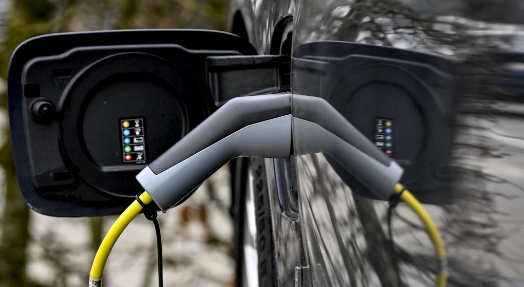 Voiture électrique Recharge - Belga Dirk Waem