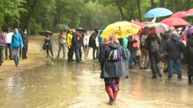 Bois de la Cambre : une manifestation contre les mesures corona rassemble 500 personnes