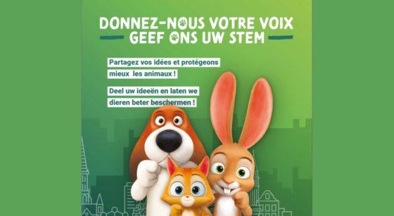 Code du Bien-être Animal - Consultation citoyenne Bruxelles - Bruxelles Environnement