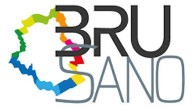 Brusano, une rationalisation d'associations qui coûte plus cher à Bruxelles
