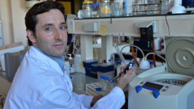 Découverte à l'ULB : l'ARN messager bientôt au service de la lutte contre le cancer