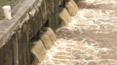 La Région bruxelloise peu touchée par les inondations : voici comment elle y fait face