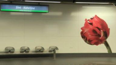 Art en sous-sol : à la découverte des oeuvres des stations de métro bruxelloises