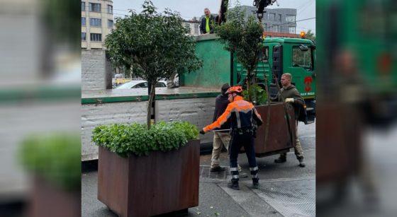 Bacs arbres Rue de Flandre Bruxelles - Bart Dhondt Twitter