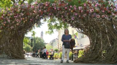 Des milliers de fleurs colorent à nouveau le centre de Bruxelles