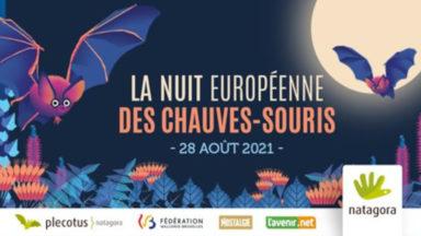 La Nuit européenne des chauves-souris aura lieu le 28 août