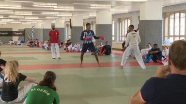 En prévision du championnat d'Europe Jeunes, un stage de karaté au Palais du Midi