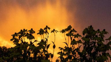 Du soleil en matinée avant le passage des orages