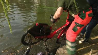 Des plongeurs aux étangs d'Ixelles… pour une action de nettoyage