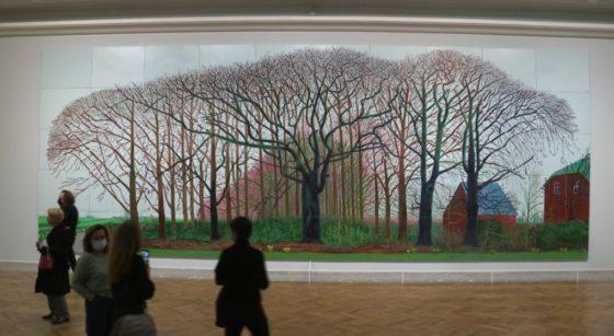David Hockney - Exposition Bozar - BX1