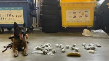 Un chien policier découvre de la cocaïne et du cannabis dans un parking à Ixelles