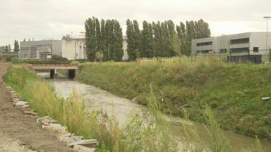 Une partie de la Senne refait surface à Bruxelles